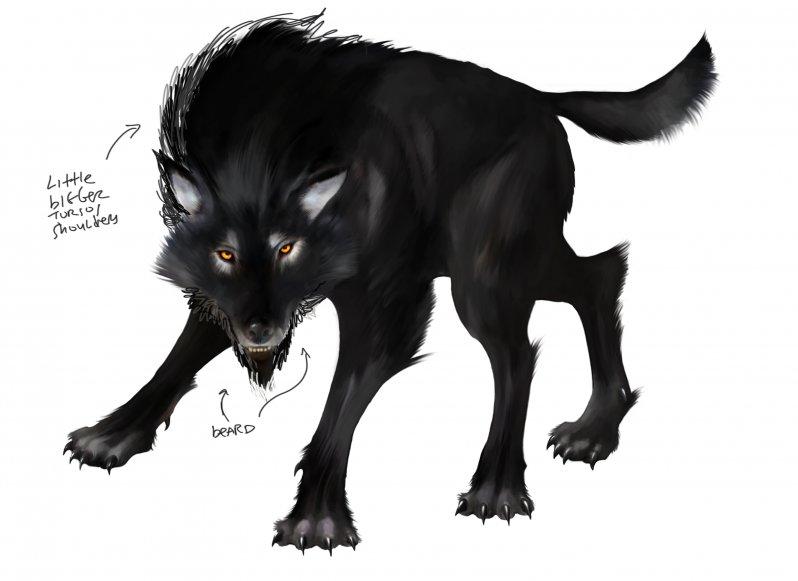 wolf_beard-jpg
